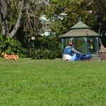 Photo de Presidential Palace Garden