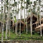 Binlang Ethnic Village Foto