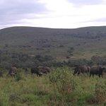 Hluhluwe Umfolozi Hilltop Camp Foto