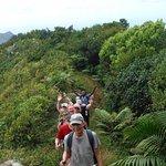 trail to Mt. Qua Qua