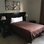 Photo de Hotel Terranova