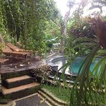 Padma Ubud Retreat Foto