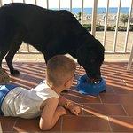 Hotel Eden e Bau Beach con bimbo e cane