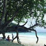 Endroit idyllique ! Le vrai Seychelles Plage de sable blanc immaculée  Mer turquoise  Cadre somp