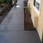 "Walkway daytime; tripped approx 3"" to vacant flower bed- no emergency lights on after outage"