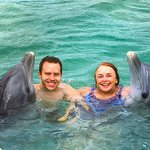 Swimming with the dolphins was one of the highlights of our trip! Go do it!!!