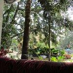 Garden view from inside Firdaus restaurant