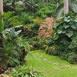 Garden walk