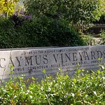 caymus sign