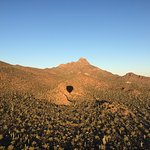 Shadow of the balloon over saguaros.