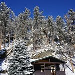 One of the cabins with the Black Hills National Forest behind it