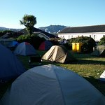 It's tent city atm at Rowena's Lodge! This is a view looking towards Wellington city.