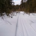 Frequently and well-groomed trail