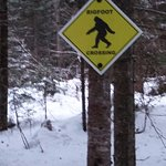 One of the little pieces of whimsy out on the snowshoe trail