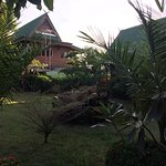 Photo of Orchid Hibiscus Guest House