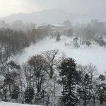 中島公園菖蒲池の冬景色
