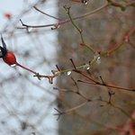 Photo de Solar de Oura