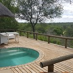 Relax in the pool after a game drive