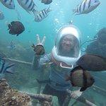 不少的熱帶魚會圍過來,但種類不算多; 每個人有一個潛水夫指導員陪伴,在水下還算安全