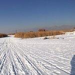 哈素海景區