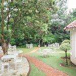 Our beautiful Garden
