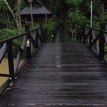 Boardwalk to chalet
