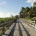 Freehand Miami Foto