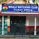 Whale Watching Club