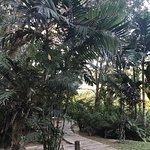 Photo of Fern Resort