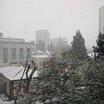 Foto de Sochi-Magnolia Hotel