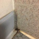 Filthy bathroom. Stayed in room 5 Jan 17