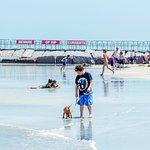 JP Luby Surf Park Foto
