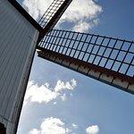 Underneath the windmill