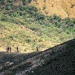 Foto de Bigfoot Hostel and Volcano Boarding