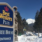 BEST WESTERN PLUS Tree House Foto