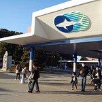 Photo of Aqua World Ibaraki Prefectural Oarai Aquarium