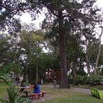 Photo of National Park (Parque Nacional)