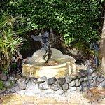 La fontaine du Parnell Village