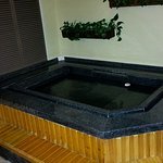 Hot spring hot tub in every room