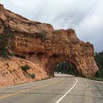 Photo of Red Canyon