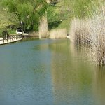 Parc de Vallparadis Foto