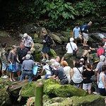 Photo of Hidden Valley Tour (Manila)