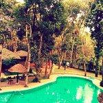 Photo de Thekkady - Woods n Spice, A Sterling Holidays Resort