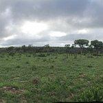 Photo of Rhino Walking Safaris at Plains Camp