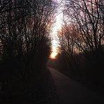 Walking down to Woodlesford lock