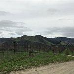 Photo de Wine Canyon Tours