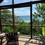 Monkey House view