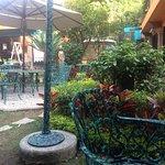 Tienen una pequeña tienda y un jardín muy bonito