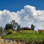 Pinnacle Restaurant and Falkner Winery in the Clouds