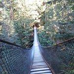 Photo of Lynn Canyon Suspension Bridge